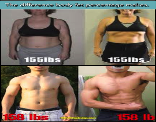 All Same weight different body fat